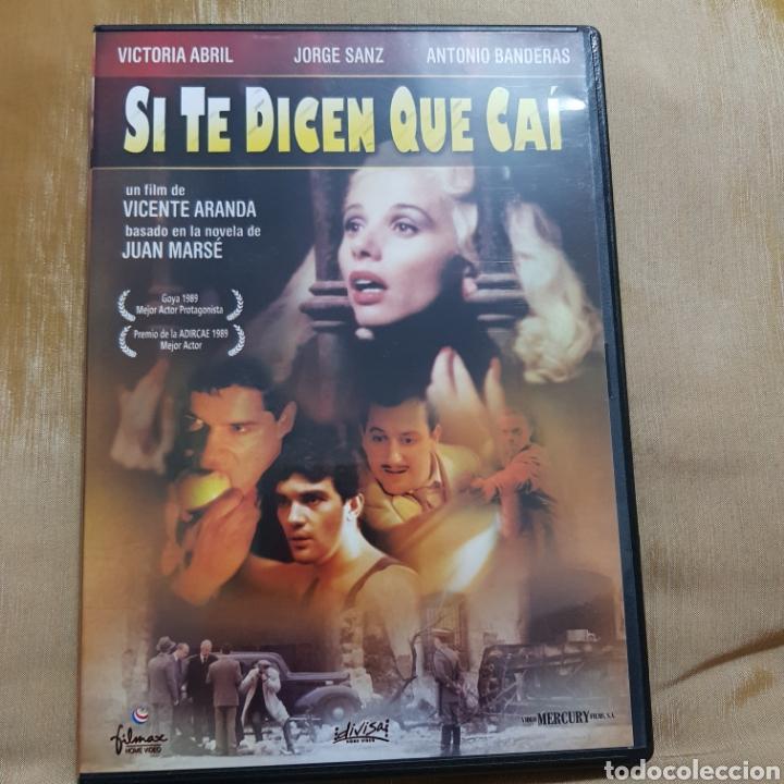 (S175) SI TE DICEN QUE CAI - DVD SEGUNDAMANO IMPOLUTA (Cine - Películas - DVD)