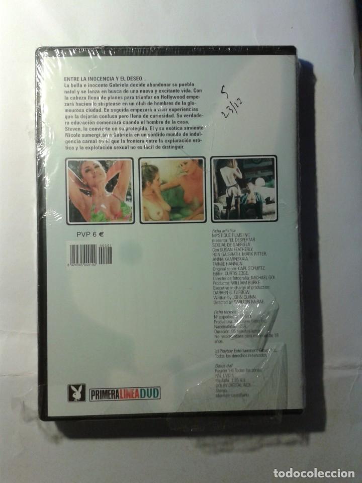 Cine: EL DESPERTAR SEXUAL DE GABRIELA DVD NUEVO - Foto 2 - 176356017