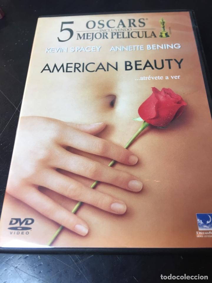 AMERICAN BEAUTY DVD (Cine - Películas - DVD)