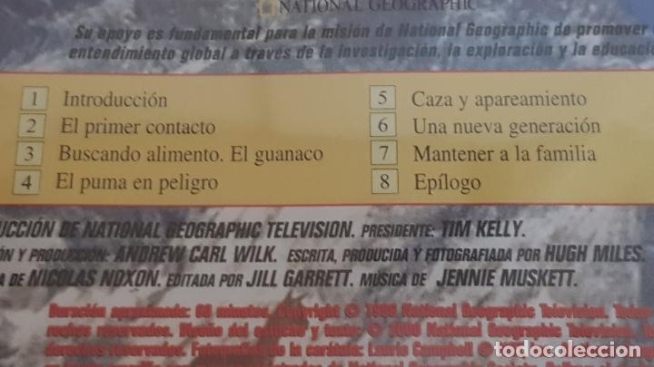 Cine: PUMA / EL LEÓN DE LOS ANDES / NATIONAL GEOGRAPHIC / DVD - PRECINTADO. - Foto 3 - 178895330