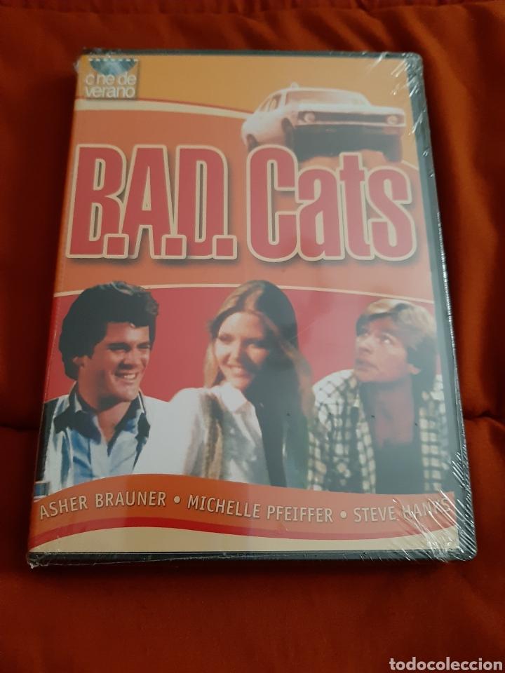 DVD BAD CATS (ART. NUEVO) (Cine - Películas - DVD)