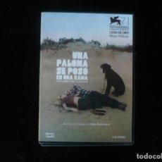 Cine: UNA PALOMA SE POSO EN UNA RAMA - DVD COMO NUEVO . Lote 194664126