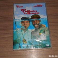 Cine: DOS CHIFLADOS EN REMOJO DVD JOE PESCI DANNY GLOVER NUEVA PRECINTADA. Lote 196050742
