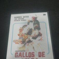 Cine: REF. 1496 GALLOS DE PELEA - DVD NUEVO A ESTRENAR. Lote 207283107