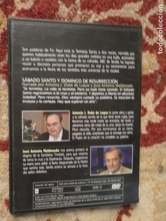 Cine: COLECCION 8 DVD PALABRAS DE PASIÓN SEMANA SANTA SEVILLA PASTORA SOLER CESAR CADAVAL ALVAREZ DUARTE - Foto 6 - 213265322