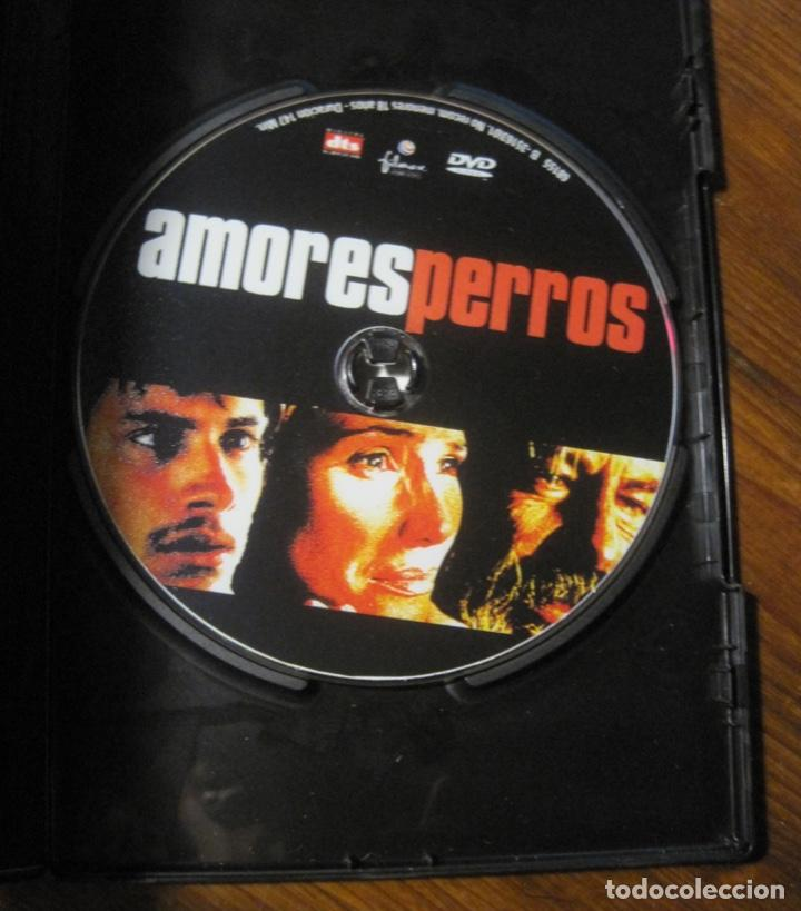 AMORES PERROS DVD- ALEJANDRO GONZALEZ IÑARRITU (Cine - Películas - DVD)