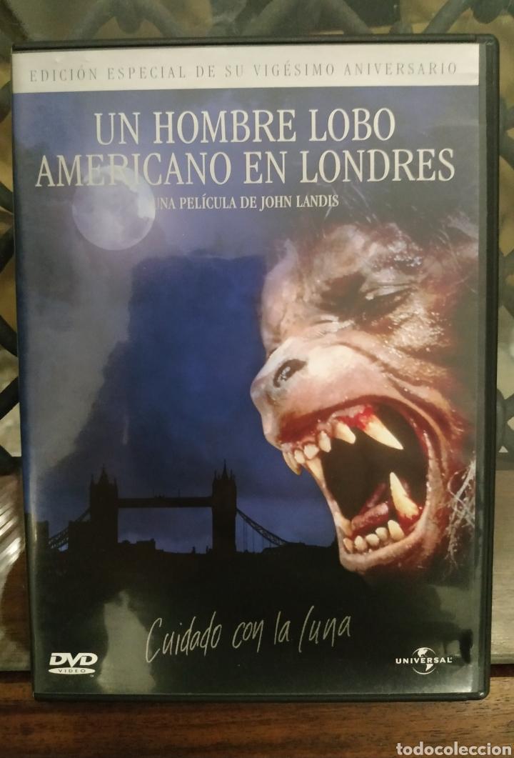 DVD - UN HOMBRE LOBO AMERICANO EN LONDRES --- DE JOHN LANDIS --- INCLUYE FOLLETO (Cine - Películas - DVD)