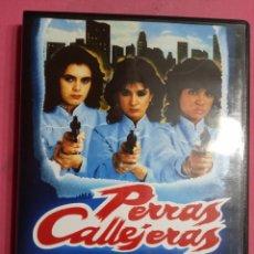 Cinema: PERRAS CALLEJERAS. Lote 244968870