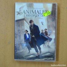 Cinema: ANIMALES FANTASTICOS Y DONDE ENCONTRARLOS - DVD. Lote 252013205