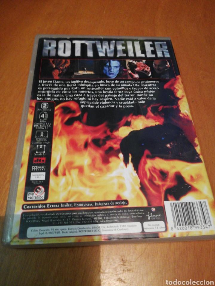 Cine: Rottweiler dvd - Foto 2 - 253574845