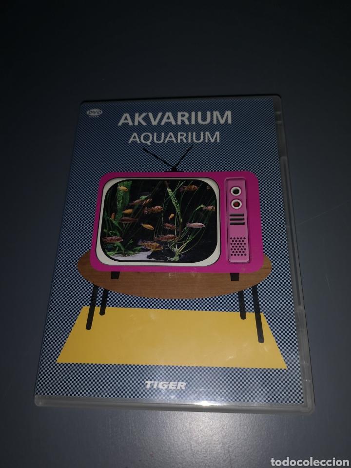 T1P108. DVD. AKVARIUM. AQUARIUM (Cine - Películas - DVD)
