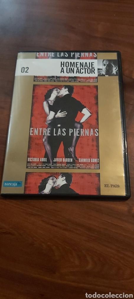 DVD, ENTRE LAS PIERNAS (Cine - Películas - DVD)