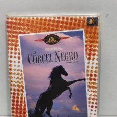 Cine: DVD - CINE - EL CORCEL NEGRO - COLECCIÓN CINEMA KIDS. Lote 280663833
