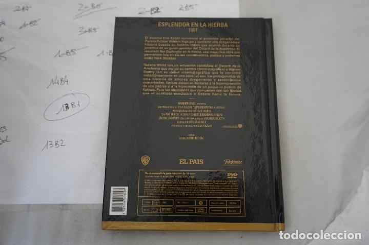 Cine: DVD + LIBRETO - ESPLENDOR EN LA HIERBA - / ELIA KAZAN - Foto 3 - 287676348