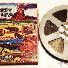 "Cine: PELICULA SUPER 8MM DIBUJOS ""WILDEST AFRICA"". Lote 54523716"