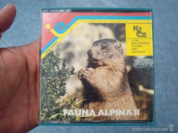 FAUNA ALPINA II CORTOMETRAJE-SUPER 8 MM –VINTAGE FILM (Cine - Películas - Super 8 mm)