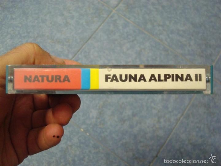 Cine: FAUNA ALPINA II CORTOMETRAJE-SUPER 8 MM –VINTAGE FILM - Foto 23 - 57283904