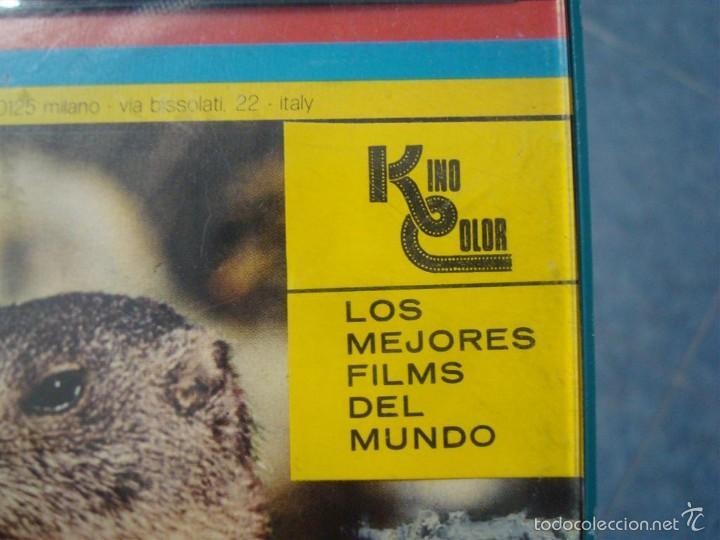 Cine: FAUNA ALPINA II CORTOMETRAJE-SUPER 8 MM –VINTAGE FILM - Foto 26 - 57283904