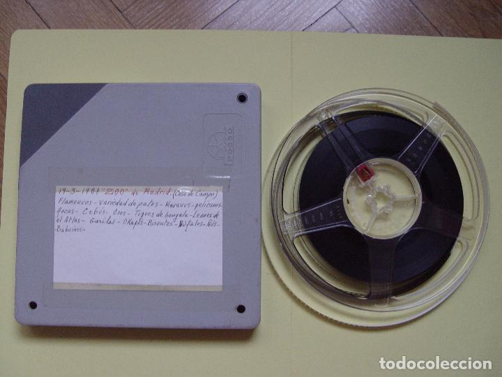 SÚPER 8 MM.: ZOO MADRID (1987) GRABACIÓN CASERA. ORIGINAL. COLECCIONISTA (Cine - Películas - Super 8 mm)
