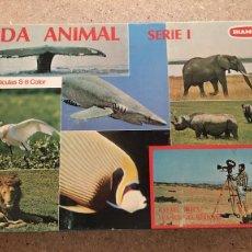 Cine: LOTE DE 6 PELICULAS SUPER 8 MM VIDA ANIMAL DE BIANCHI. Lote 102113943