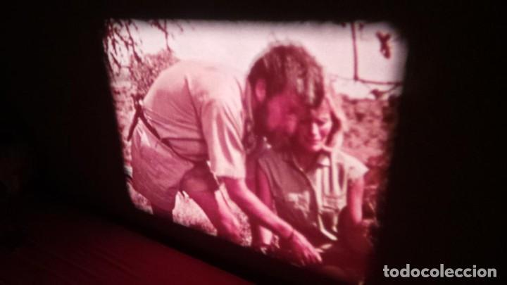 Cine: BORN FREE(Nacida Libre)-REDUCCIÓN, Versión Original Inglés PELÍCULA-SUPER 8 MM-RETRO-VINTAGE FILM - Foto 20 - 112674367