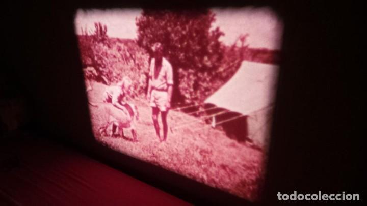 Cine: BORN FREE(Nacida Libre)-REDUCCIÓN, Versión Original Inglés PELÍCULA-SUPER 8 MM-RETRO-VINTAGE FILM - Foto 24 - 112674367