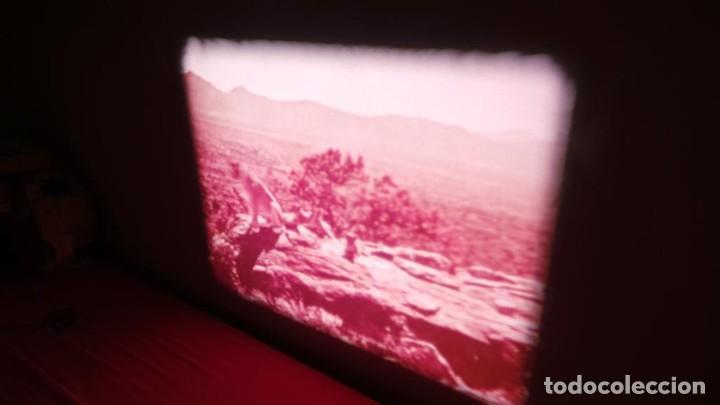 Cine: BORN FREE(Nacida Libre)-REDUCCIÓN, Versión Original Inglés PELÍCULA-SUPER 8 MM-RETRO-VINTAGE FILM - Foto 26 - 112674367