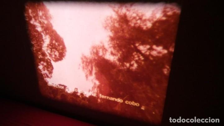 Cine: ALEGRE CARNAVAL-(CARNAVAL EN RÍO) PELÍCULA SUPER 8 MM-RETRO VINTAGE FILM - Foto 8 - 112675615