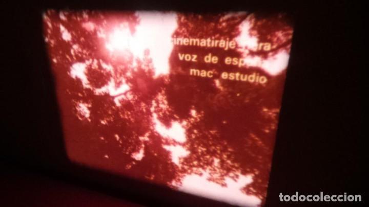 Cine: ALEGRE CARNAVAL-(CARNAVAL EN RÍO) PELÍCULA SUPER 8 MM-RETRO VINTAGE FILM - Foto 10 - 112675615