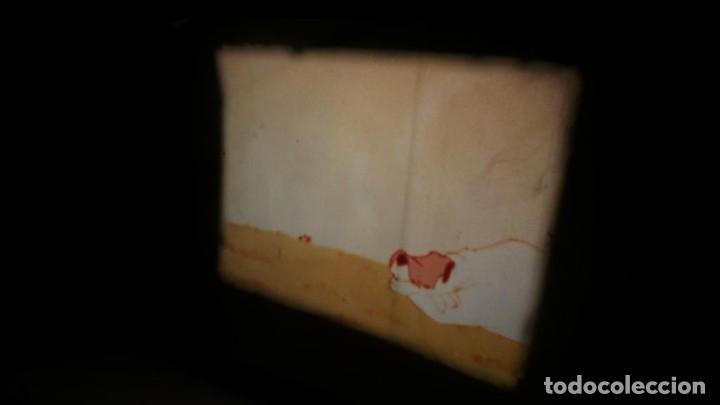 Cine: BOBINA TRES CORTOMETRAJES CLASICOS-DIBUJOS ANIMADOS SUPER 8 MM VINTAGE FILM Nº 362 - Foto 26 - 142020238