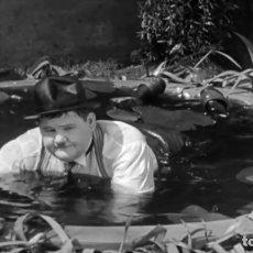 Cine: 'RADIOMANÍA' (HOG WILD, 1930) STAN LAUREL Y OLIVER HARDY. 18 MINUTOS. V. E. SUPER 8 MM.. Lote 137166646