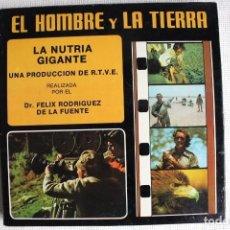 Cine: EL HOMBRE Y LA TIERRA. LA NUTRIA GIGANTE. FELIX RODRIGUEZ DE LA FUENTE. Lote 153763794