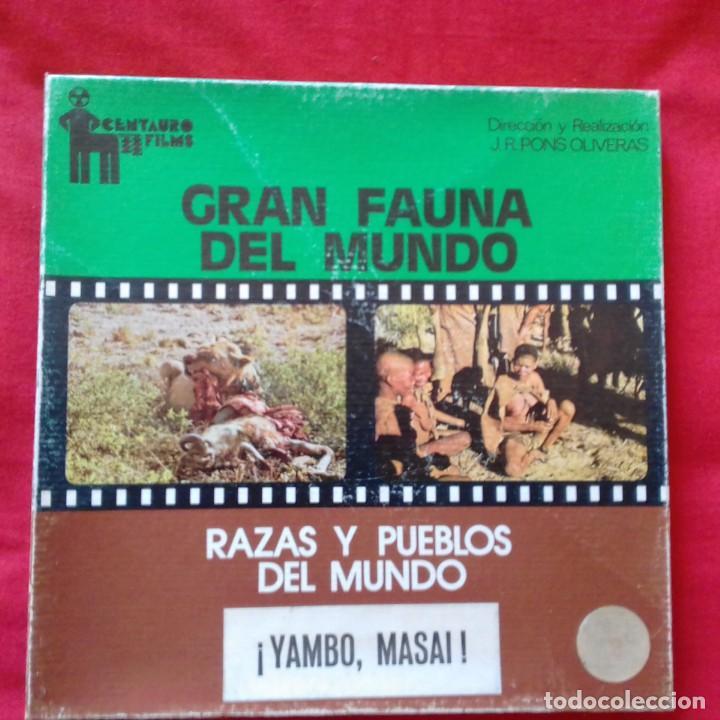 SUPER 8 MM. CENTAURO FILMS GRAN FAUNA DEL MUNDO RAZAS Y PUEBLOS DEL MUNDO YAMBO MASAI AFRICA . (Cine - Películas - Super 8 mm)