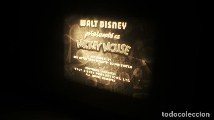 Cine: BOBINA TRES CORTOMETRAJES-1 X 120 MTS-CLASICOS-WALT DISNEY SUPER 8 MM VINTAGE FILM # 352 - Foto 143 - 187945092