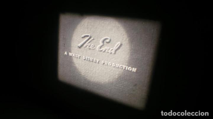 Cine: BOBINA TRES CORTOMETRAJES-1 X 120 MTS-CLASICOS-WALT DISNEY SUPER 8 MM VINTAGE FILM # 352 - Foto 144 - 187945092