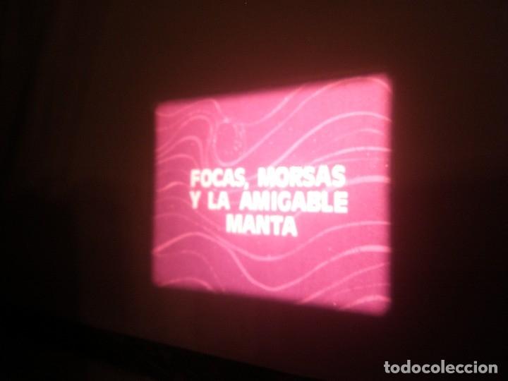 Cine: DOCUMENTAL BOBINA 90 MTS. - Foto 5 - 164616114