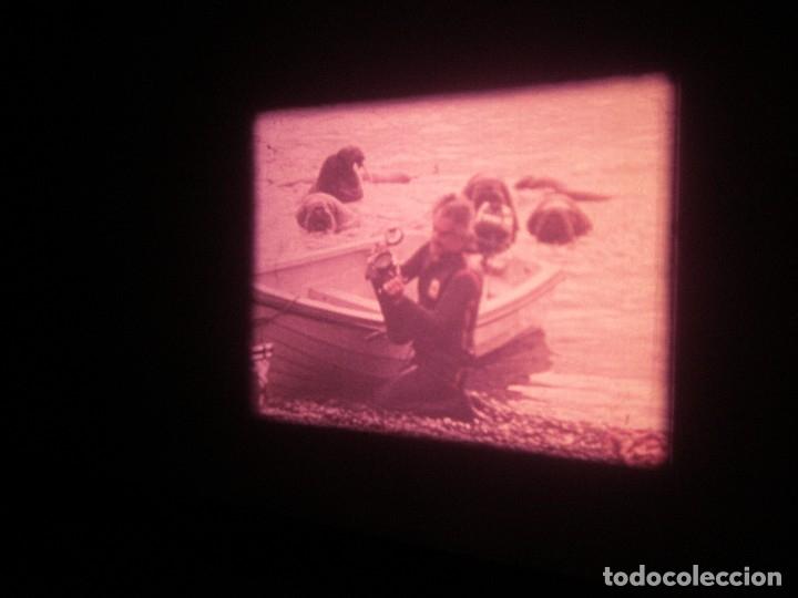 Cine: DOCUMENTAL BOBINA 90 MTS. - Foto 10 - 164616114