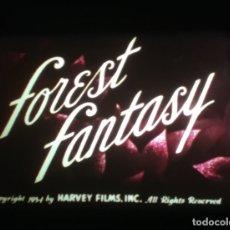 Cine: SUPER 8 ++ FOREST FANTASY ++ 60 METROS. Lote 179085923