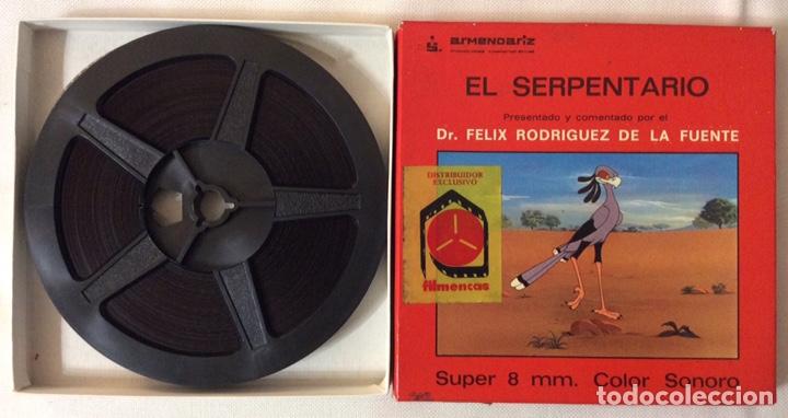 Cine: PELÍCULA CORTOMETRAJE SÚPER 8MM, EL SERPENTARIO, FÉLIX RODRÍGUEZ DE LA FUENTE - Foto 2 - 179238563