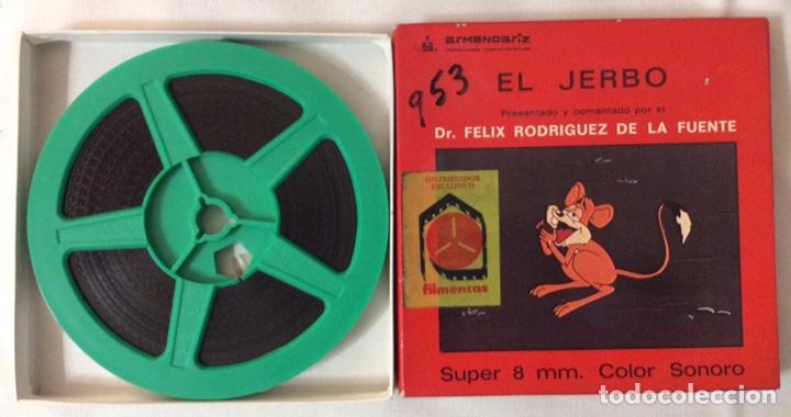 Cine: PELÍCULA CORTOMETRAJE SÚPER 8MM, EL JERBO, FÉLIX RODRÍGUEZ DE LA FUENTE - Foto 2 - 179238772