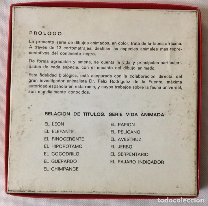 Cine: PELÍCULA CORTOMETRAJE SÚPER 8MM, EL JERBO, FÉLIX RODRÍGUEZ DE LA FUENTE - Foto 3 - 179238772