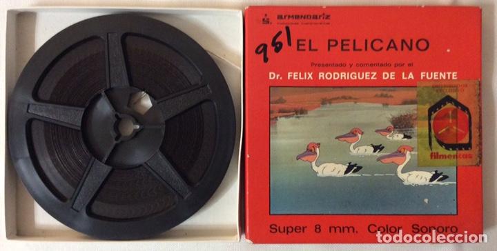 Cine: PELÍCULA CORTOMETRAJE SÚPER 8MM, EL PELÍCANO, FÉLIX RODRÍGUEZ DE LA FUENTE - Foto 2 - 179238993