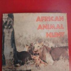 Cine: SÚPER 8 AFRICAN ANIMAL HUNT CASTLE FIMS NÚMERO 663. Lote 179399473