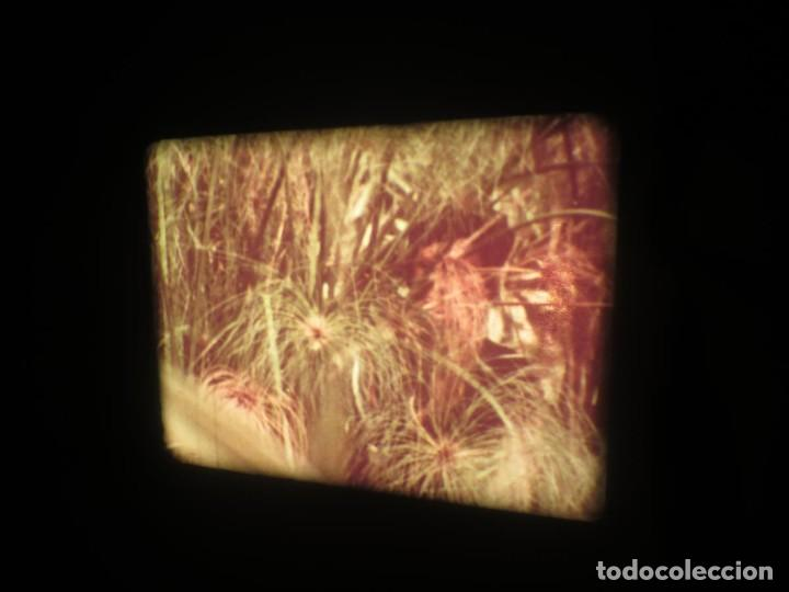 Cine: SANDOKÁN SERIE TV -SUPER 8 MM- 6 x 180 MTS-RETRO-VINTAGE FILM-EXCELLENT-COLOR IMPECABLE - Foto 78 - 189679777