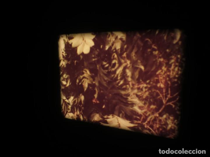 Cine: SANDOKÁN SERIE TV -SUPER 8 MM- 6 x 180 MTS-RETRO-VINTAGE FILM-EXCELLENT-COLOR IMPECABLE - Foto 338 - 189679777