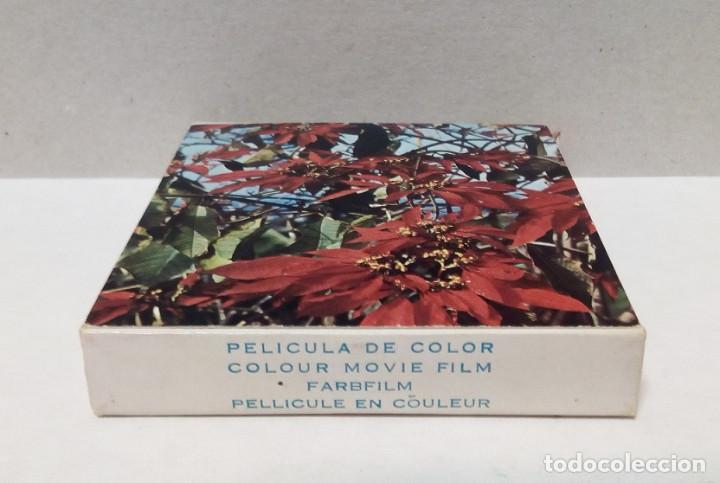 Cine: Película Super 8 mm - Color, Temática Flores - Foto 3 - 191125456