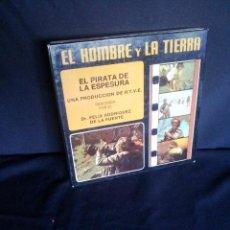 Cine: DR. FELIX RODRIGUEZ DE LA FUENTE - EL PIRATA DE LA ESPESURA (PELICULA SUPER 8 EN COLOR). Lote 209938148