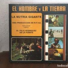 Cine: EL HOMBRE Y LA TIERRA LA NUTRIA GIGANTE DR. FELIX RODRIGUEZ DE LA FUENTE.. Lote 222322141