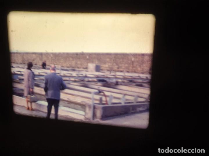 Cine: AMATEUR-VIVEROS DE MARISCO-(1974) 1 X 60 MTS SUPER 8 MM, RETRO VINTAGE FILM - Foto 5 - 234908815