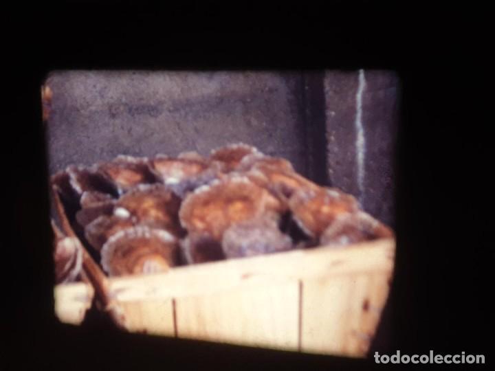 Cine: AMATEUR-VIVEROS DE MARISCO-(1974) 1 X 60 MTS SUPER 8 MM, RETRO VINTAGE FILM - Foto 45 - 234908815